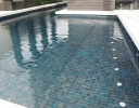 Trend PLUS 245 41x41mm Swimming Pool Mosaics Perth 1