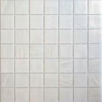 Trend PLUS Brillante 280 Swimming Pool Mosaics Perth (1)