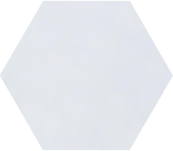 Hexagonal White Matt 1