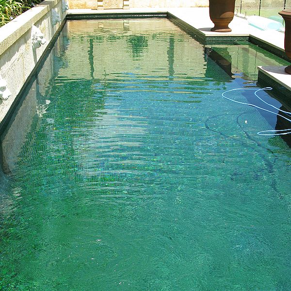 Trend Brillante 236 green swimming pool glass mosaics Perth 2